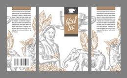 Donna della raccoglitrice del tè, foglie di tè, tazza, elefante royalty illustrazione gratis