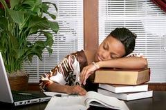 Donna di affari addormentata su una pila di libri Fotografia Stock