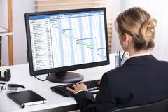 Donna di affari Analyzing Gantt Chart sul computer immagine stock libera da diritti
