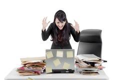 Donna di affari arrabbiata con il computer portatile sullo studio Immagini Stock