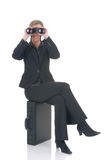 Donna di affari attraente Fotografie Stock Libere da Diritti