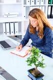 Donna di affari castana nell'ufficio fotografie stock
