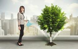 Donna di affari che innaffia albero verde sul fondo della città Fotografie Stock Libere da Diritti