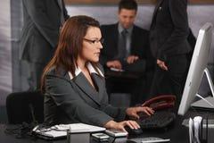 Donna di affari che per mezzo del calcolatore Immagini Stock