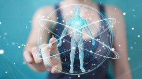 Donna di affari che usando l'interfaccia digitale 3D r di ricerca del corpo umano dei raggi x Immagine Stock