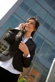 Donna di affari con un mobile Immagine Stock Libera da Diritti