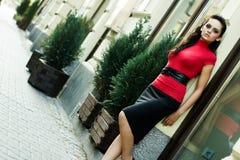 Donna di affari del Brunette Fotografie Stock Libere da Diritti