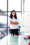 Donna di affari sicura del brunette in una presentazione Fotografie Stock Libere da Diritti