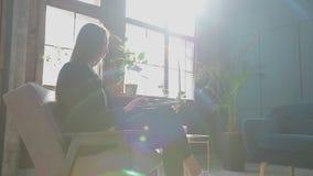 Donna di affari sicura Working su un computer portatile nel suo interno moderno blu moderno dell'ufficio Bello fare alla moda del video d archivio