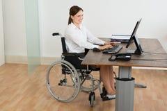 Donna di affari On Wheelchair While che lavora al computer immagini stock