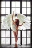 Donna di angelo immagine stock