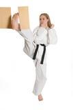 Donna di arti marziali Fotografia Stock Libera da Diritti