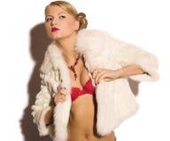 Donna di bellezza in pelliccia fotografie stock libere da diritti