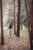 Donna di caduta felice e beatitudine, bella passeggiata della donna nel parco di autunno Immagine Stock Libera da Diritti