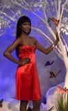 Donna di colore nel colore rosso Fotografia Stock Libera da Diritti
