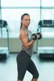 Donna di forma fisica che fa esercizio per il bicipite con le teste di legno fotografia stock libera da diritti