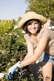 donna di giardinaggio Fotografia Stock