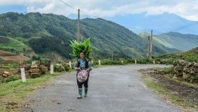 Donna di Hmong che cammina sulla strada della montagna immagini stock libere da diritti