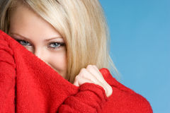 Donna di inverno Immagini Stock