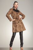 Donna di modo in cappotto animale della stampa che posa per la macchina fotografica fotografia stock libera da diritti