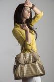 Donna di modo con la borsa Immagini Stock Libere da Diritti