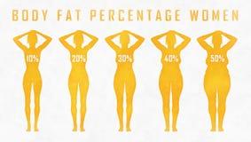 Donna di percentuale del grasso corporeo Immagini Stock