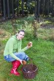 Donna di raccolto del fungo Immagine Stock Libera da Diritti