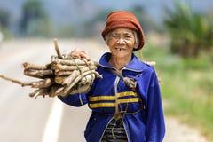 Donna di Thai dell'agricoltore della campagna Fotografia Stock Libera da Diritti