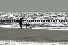 Donna e cane che camminano sulla spiaggia Fotografia Stock