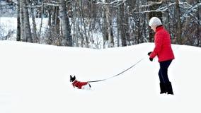 Donna e cane nell'accoppiamento dei rivestimenti rossi che camminano nella neve dopo la tempesta di inverno immagine stock