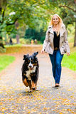 Donna e cane a recuperare il gioco del bastone Fotografie Stock