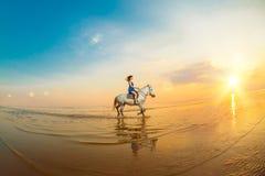 Donna e cavallo sui precedenti del cielo e dell'acqua Ragazza o di modello immagini stock libere da diritti