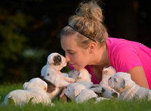 Donna e lettiera dei cuccioli Fotografia Stock