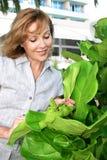 Donna e pianta Fotografia Stock