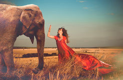 Donna ed elefante Fotografia Stock