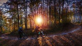 Donna ed uomini di riciclaggio che guidano sulle bici alla foresta delle montagne di tramonto immagini stock libere da diritti