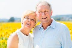 Donna ed uomo, anziani, stanti al giacimento del girasole Fotografia Stock