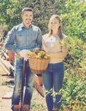 Donna ed uomo con il canestro del fiore Immagini Stock