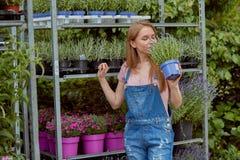 Donna emozionante con il fiore conservato in vaso Fotografia Stock Libera da Diritti