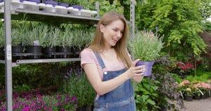 Donna emozionante con il fiore conservato in vaso video d archivio