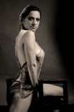 Donna erotica che propone su una presidenza Fotografia Stock