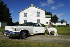 Donna esclusiva con il cane e l'automobile Fotografie Stock Libere da Diritti