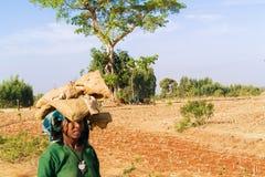 Donna etiopica Immagini Stock