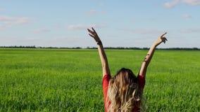 Donna felice che gode della ragazza bionda della natura sopra il cielo ed il campo Concetto di libertà archivi video
