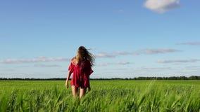 Donna felice che gode di bella bionda della natura che posa sul campo Concetto di libertà archivi video