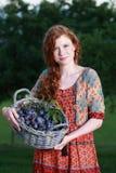 Donna felice che tiene un canestro con le prugne Fotografia Stock