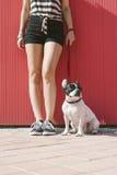 Donna felice con il bulldog francese Immagine Stock