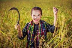 Donna felice dell'agricoltore nel giacimento del riso Fotografia Stock