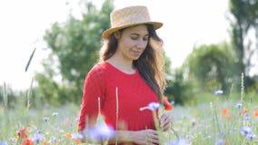 Donna felice libera in vestito rosso che gode della natura Passeggiate all'aperto della ragazza di bellezza su un campo del papav archivi video