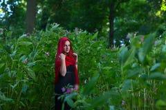 Donna in foresta scura Fotografia Stock Libera da Diritti